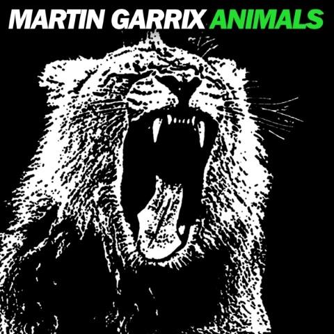 مارتین دیریکس-حیوانات اصلی