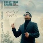 ۱۴۴۹۵۸۳۳۸۶۷۹۰۶۷۴۸۶saeed-shayesteh-parastooye-ghaarib