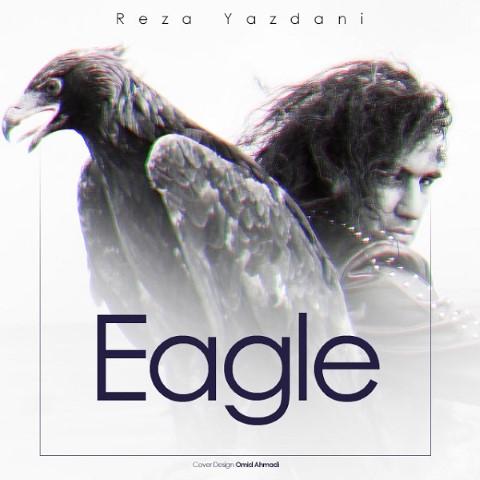 رضا یزدانی-عقاب