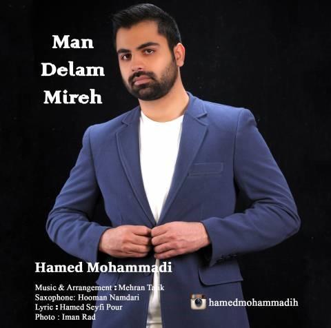 حامد محمدی-من دلم میره