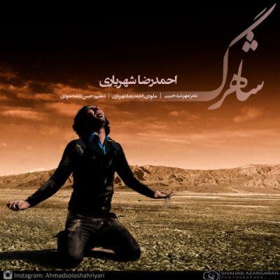 احمدرضا شهریاری-شاهرگ