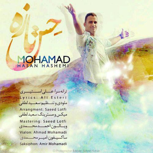محمد حسن هاشمی-حس تازه