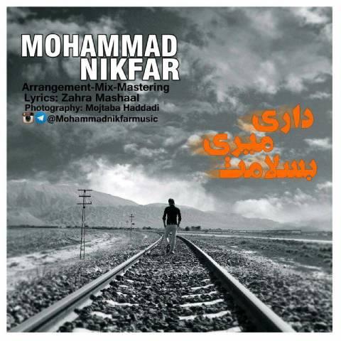 محمد نیکفر -داری میری به سلامت