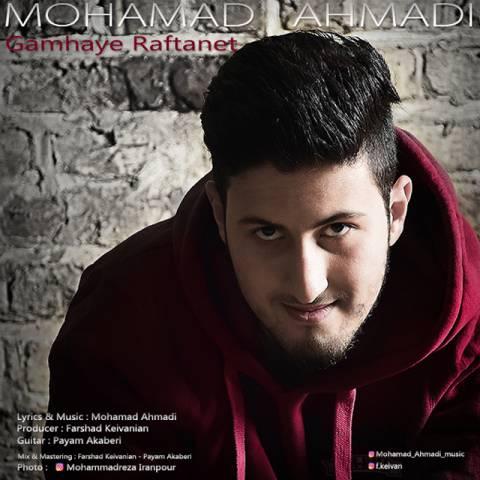 محمد احمدی -گامهای رفتنت