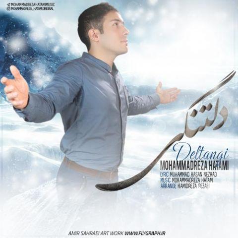 محمدرضا حاتمی-دلتنگی