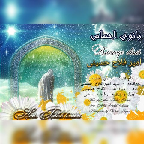امیر فلاح حسینی-بانوی احساس