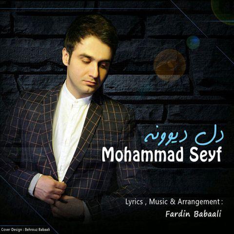 محمد سیف-دل دیوونه