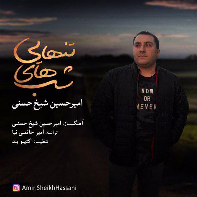 آهنگ   امیرحسین شیخ حسنی به نام شبهاى تنهایى