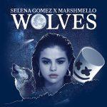 دانلود آهنگ Selena Gomez و Marshmello به نام Wolves